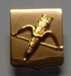 В Ачинске учрежден драгоценный Знак за весомый вклад в развитие города