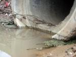 Ачинский суд рассмотрит 7 исков прокурора об организации на территории сельских поселений сбора и вывоза бытовых отходов