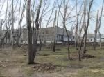 Город Назарово выиграл губернаторский грант на благоустройство территории