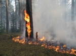 На всей территории Красноярского края объявлен режим чрезвычайной ситуации