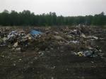 В Ужурском районе до сих пор не убраны свалки