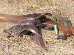 Ачинские полицейские в заказнике задержали браконьера