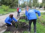 В Назарово проходит акция «Тысяча горожан — тысяча деревьев»