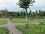 В Назарово пройдет открытие парка «Комсомольский»