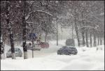 Ожидается снегопад и ветер 15-17м/с