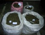 Ачинца поймали с мешком марихуаны