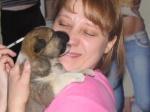 Ачинцы собрали рекордную сумму в помощь бездомным животным