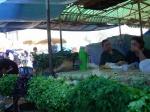 Ачинские садоводы готовы устроить картофельный бунт у стен мэрии