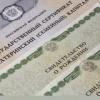 Сертификат на материнский капитал получили 74 тысячи семей края