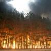 В Туве при тушении крупного лесного пожара погибли  парашютисты-десантники