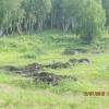 В Ачинском районе дадут отпор расхитителям земель