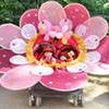 Ачинские мамы  проведут карнавал необычных колясок