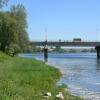 Предприниматели Минусинска очистили берег протоки