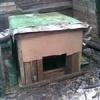 Житель Каратузского района прятался от приставов в будке