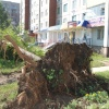 По  югу Красноярского края пронесся ураган