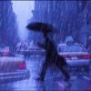 МЧС предупреждает  о неблагоприятных метеорологических явлениях