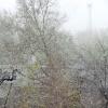 В  Ачинске идет первый снег