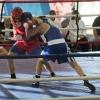 Ачинские боксёры стали лучшими на турнире имени Баркина