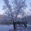 Красноярские дворники будут чистить снег «по минимуму»
