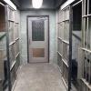 Интерпол вызволил красноярку из иностранной тюрьмы
