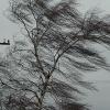 В Енисейском районе из-за ветра произошло отключение электроэнергии
