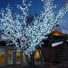 Красноярск избавляется от светящихся деревьев