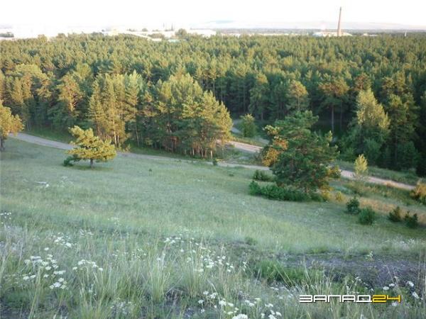 полиэстер: продажа участков в п зеленый бор минусинский район или, как его