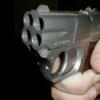 Железногорские полицейские выявили обстоятельства стрельбы