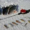Красноярские рыболовы будут бороться за победу на чемпионате