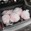 Шушенские инспекторы ДПС поймали «несуна» несушек