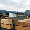 В крае запустят четыре лесоперерабатывающих производства