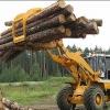 Рентабельность лесной отрасли края страдает от железнодорожных тарифов