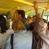 Красноярские водители автобусов ездят с нарушениями