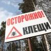 В Красноярске идет борьба с клещами