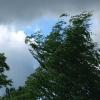 Накануне над Тувой пронесся ураган