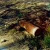 В Красноярске найден снаряд