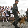 Красноярская полиция обеспечит безопасность «последних звонков» в школах