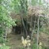 Подозреваемый в преступлении  житель Ачинска  месяц скрывался в лесу