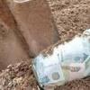 Сельхозпроизводители края освобождаются от налога на имущество