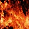 В крае ликвидировано 11 лесных пожаров