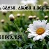 Минусинск готовится отметить День Семьи, Любви и Верности