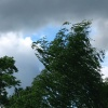 На Юге края и Хакасии  объявлено штормовое предупреждение
