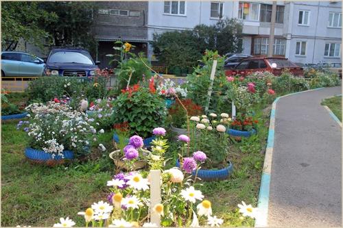 самые красивые цветый двора частного дома фото само