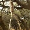 В хакасской столице мужчина повесился на дереве в людном месте