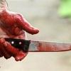 Пьяная разборка в лесу под Зеленогорском закончилась убийством