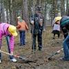Осенью в Ленинском районе высадят 2,5 т. деревьев
