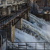 Экологи бьют тревогу: наличие хариуса в Ангаре не говорит о чистоте вод