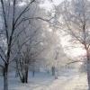 Жителей края предупреждают об аномально холодной погоде