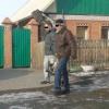 В Абакане двое мужчин убили собаку, чтобы съесть