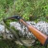 Назаровцам грозит наказание за незаконную охоту на косуль